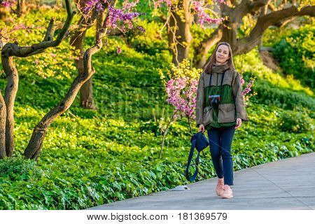 Blossoming peach tree at Montjuic hill in spring day. Woman walking along park trail. Barcelona, Catalonia.