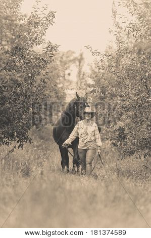 Animal and human love equine concept. Western woman walking on green meadow or forest with horse
