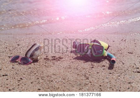 traveling and leisure. diving mask with snorkel pink sunglasses and marine shell or seashell natural conch on wet sandy beach at sea water shore on sunny on sand background. Idyllic summer vacation
