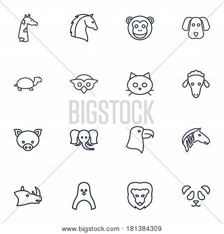 Set Of 16 Beast Outline Icons Set.Collection Of Monkey, Lion, Rhino And Other Elements.
