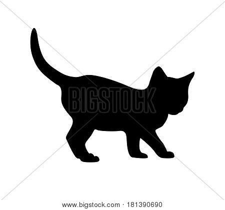 Kitten Silhouette On White Backgruond