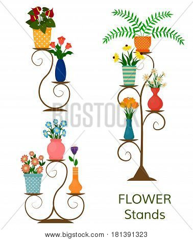 Houseplants or indoor plants and potted flowers on shelves and stands. EPS10 vector illustration in flat style.