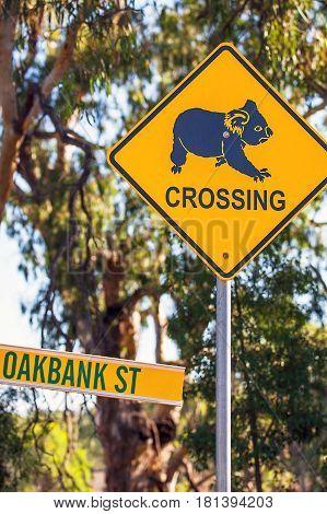 Koala warning sign near Narrandera new Soth Wales Australia