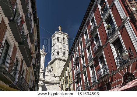 Valladolid (Castilla y Leon Spain): historic buildings with typical balconies and verandas and the cathedral