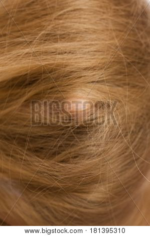 Woman Face Covered With Blonde Long Hair