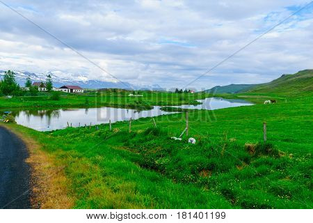 Countryside, Landscape In Northeast Iceland