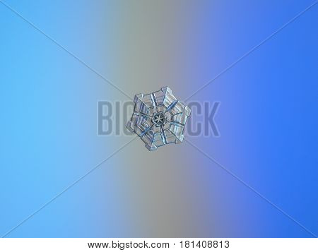 Real snowflake macro photo: small snow crystal of sectored plate type with simple hexagonal shape, glossy and relief surface with six deep rows, which divide snowflake to sectors. Snowflake glitters on bright blue - gray gradient background in cold light.