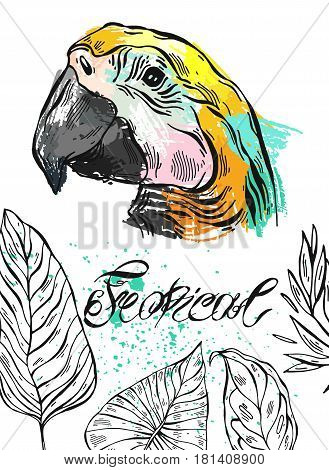 Tropical jungle template card with parrot bird and tropical palm leaf on white background.Hand drawn abstract textured summer illustration.Lettering.Summer tropical background for party, greeting
