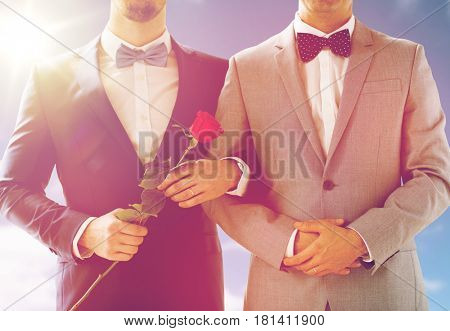people, homosexuality, same-sex marriage and love concept - close up of happy male gay couple with red rose flower holding hands on wedding over sky and sun background