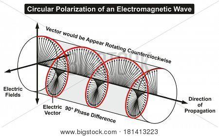 Circular Polarization of an Electromagnetic Light Wave infographic diagram showing electric fields phase difference direction of propagation rotating counterclockwise for physics science education
