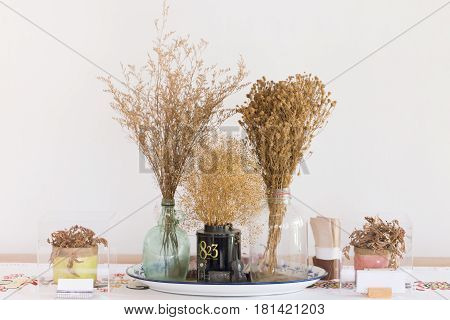 dried grass dry flower white indy home cafe decoration hipster style.
