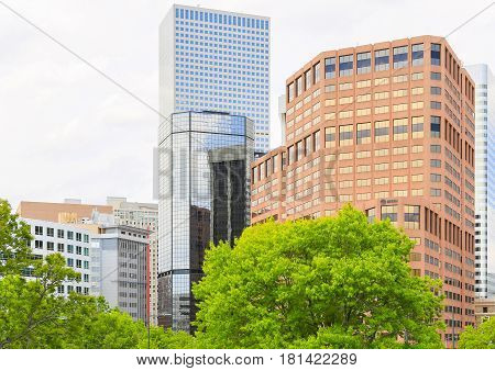 Green In Downtown Denver