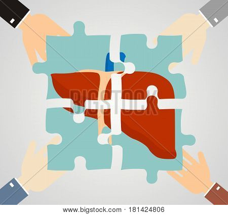 the concept of treatment of liver diseases. liver composed of puzzle pieces