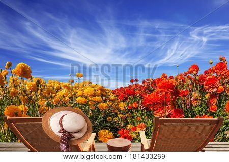 Couple wooden convenient a chaise lounge near the field of buttercups. Elegant women's straw hat hanging on a deck chair. Concept of recreational tourism