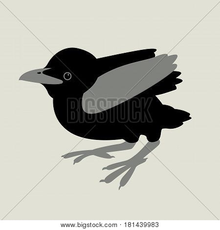 baby Raven vector illustration style Flat  side