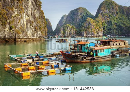 Traditional floating village and rock islands in Ha long Bay, Vietnam, Southeast Asia