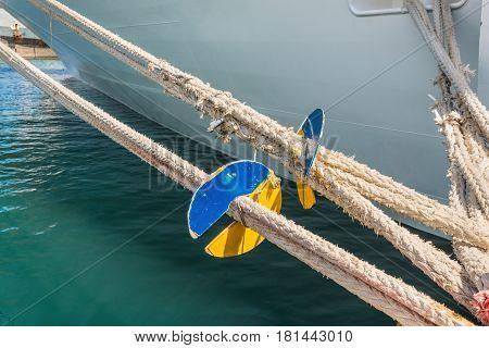 Marine Rat Guard on the mooring rope of passenger liner
