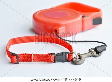 red color matching of automatic leash and nylon pet collar on white background