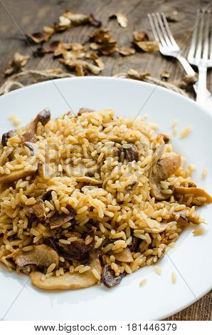 Homemade traditional Italian mushroom risotto on wooden table. Classic Risotto with mushrooms and vegetables served on a white plate. Wild mushrooms risotto.