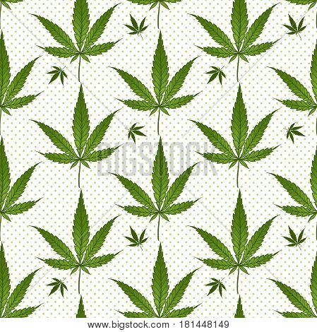 Seamless Pattern Medical Marijuana Green Leafs Over Polka Dots On White Background. Cannabis Vector