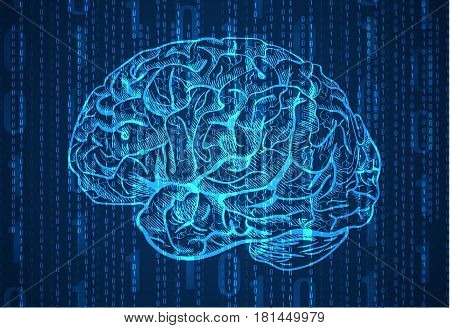 Background with numbers and brain sketch. Abstract blue background. VECTOR illustration.