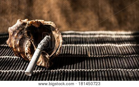 cigarette in the ashtray from the shells close-up