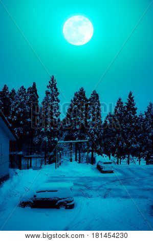 Snow covered the ground and car in winter. Silhouette of trees night sky and full moon on spooky green background. High contrast. Cross process and vintage tone. The moon were NOT furnished by NASA.