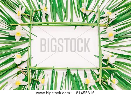 Floral rectangular frame of yellow flowers of daffodils and green leaves on white background with space for text top view