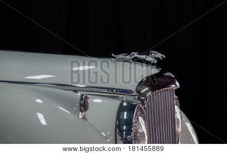 Jaguar Emblem (jaguar In The Jump) On Vintage Jaguar Car