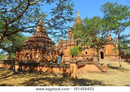 Temples between trees in Bagan, Myanmar (Burma)
