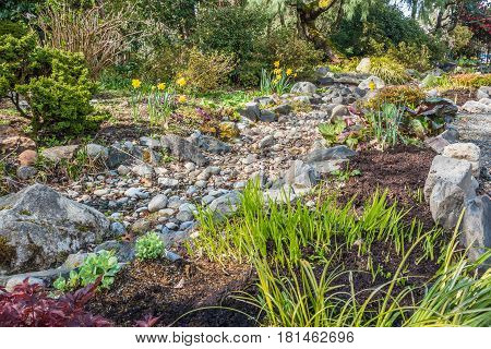 A view of a dry stream bed and flowers in Springt. Location is Seatac Washington.