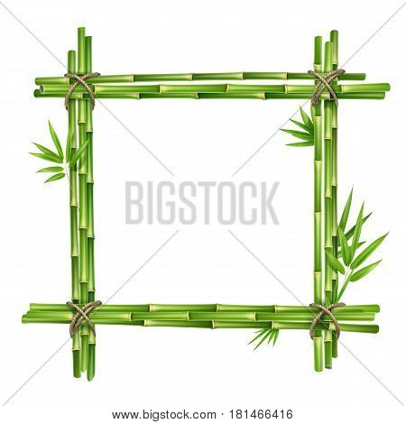 Vector frame from bamboo stems and leaves tied with rope isolated on white background