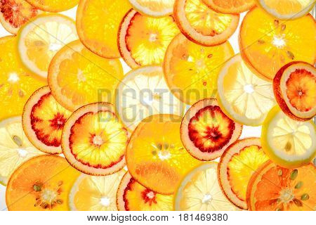 Orange, Lemon, Mandarin, Red Orange On White