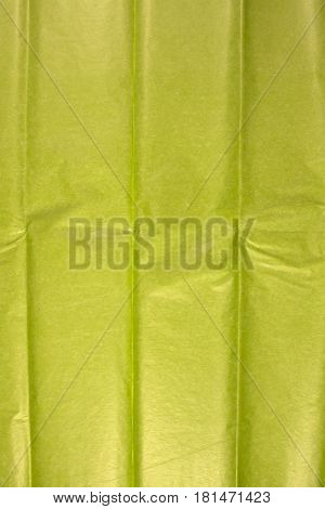 This is a closeup photograph of Green Tissue paper