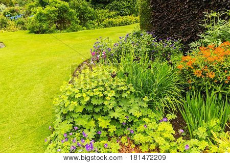 Beautiful green garden landscaping in the summer