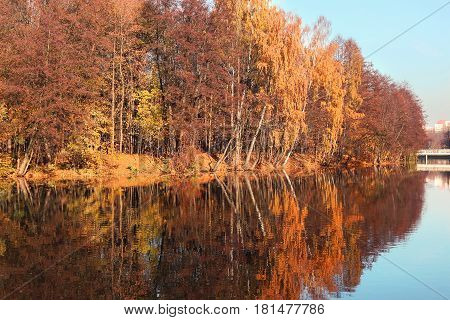 Beautiful autumn park. Autumn in Minsk. Autumn trees and leaves. Autumn Landscape.Park in Autumn. Mirror reflection of trees in water. Minsk city. Victory park in Minsk