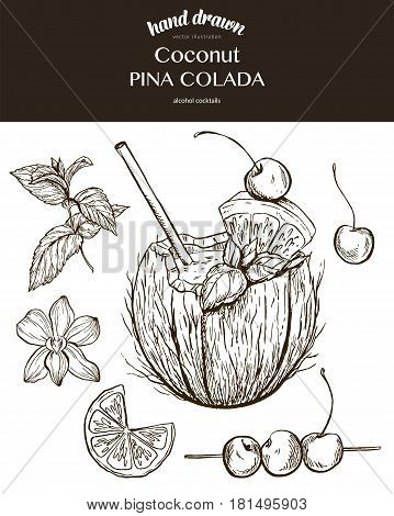 Coconut Pina Colada. Vector sketch illustration of cocktails. Hand drawn.