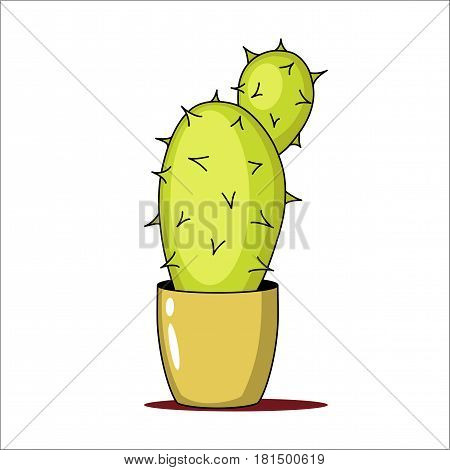 Spiny green cactus in a pot. Vector illustration.