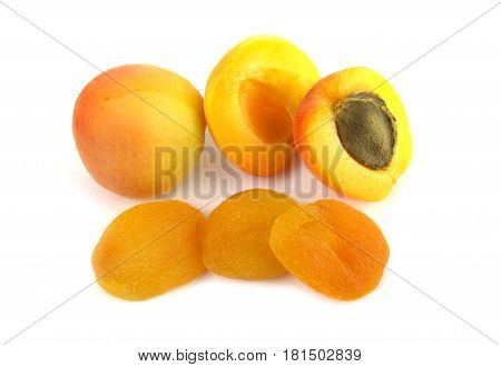 Fresh and sun dried apricots on white background.