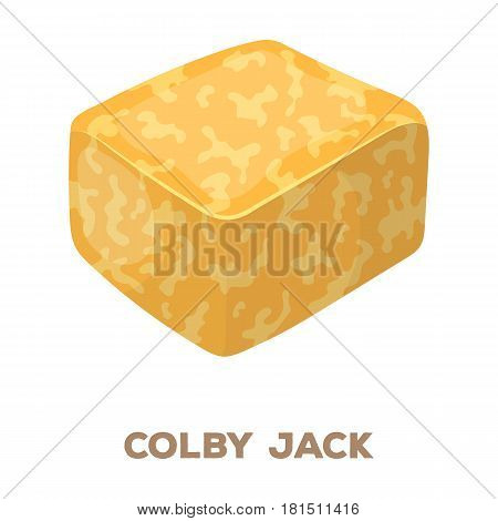 Colby gack.Different kinds of cheese single icon in cartoon style vector symbol stock illustration .