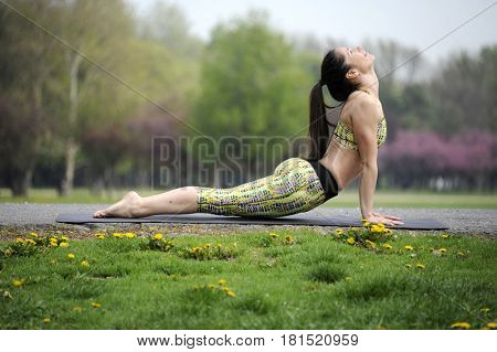 Young woman doing yoga in morning park. Upward facing dog pose, úrdhva-mukha-svanasana. Healthy lifestyle outdoor conception.