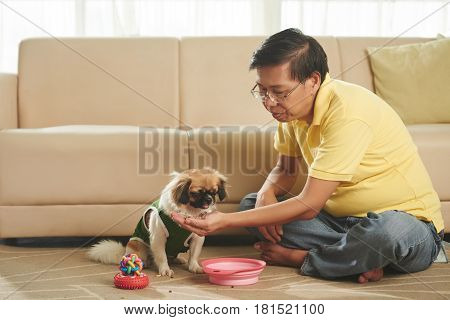 Singaporean mature man giving treat to his dog