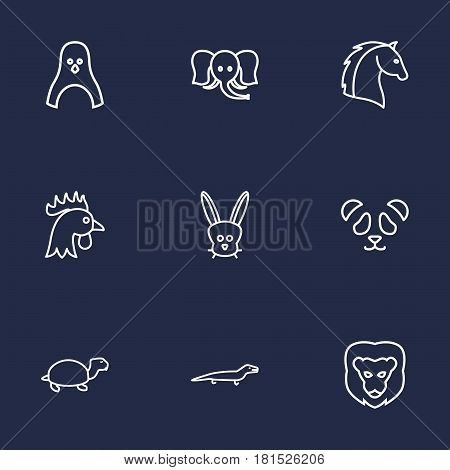 Set Of 9 Brute Outline Icons Set.Collection Of Turtle, Lion, Horse And Other Elements.