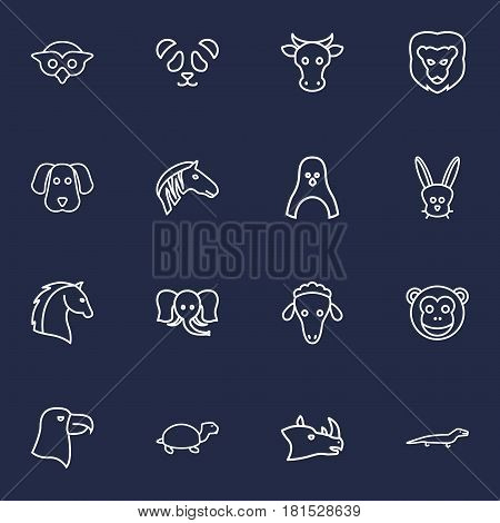 Set Of 16 Alive Outline Icons Set.Collection Of Monkey, Elephant, Horse And Other Elements.