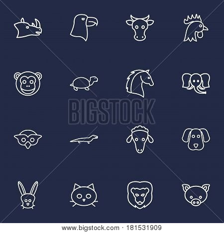 Set Of 16 Brute Outline Icons Set.Collection Of Rhino, Turtle, Owl And Other Elements.