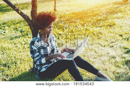Charming young black female is working on laptop while sitting on grass of spring meadow near tree mixed teenager girl with curly afro hair using net-book while sitting on the ground in summer park