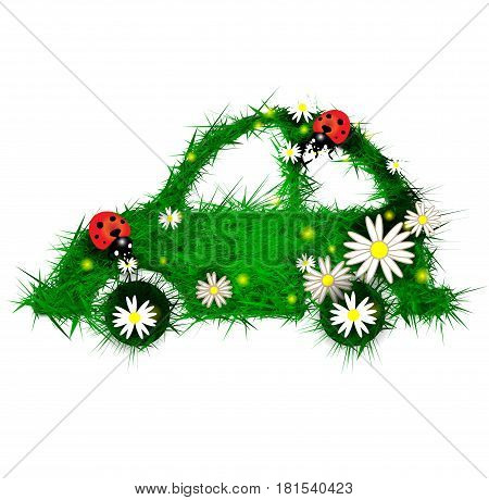 Car of herbs with ladybug and daisies