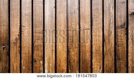 the brown old wood texture with knot and