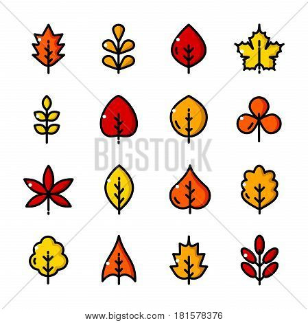 Thin line Autumn Leaves different forms icons set, Leaf Fall outline logos vector illustration