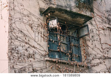 View of exterior of an old abandoned unfinished brick wall house with overgrown gapes of brown and vines